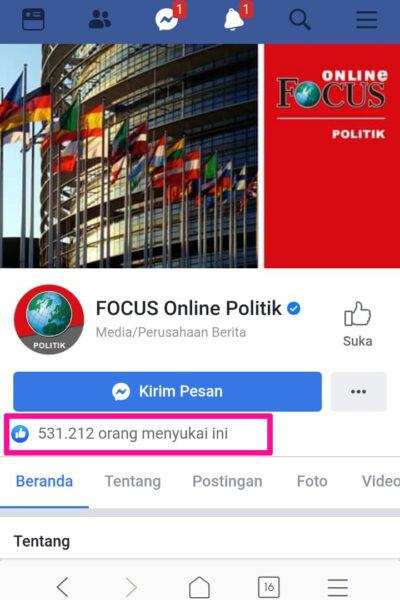 facebook-politik-2